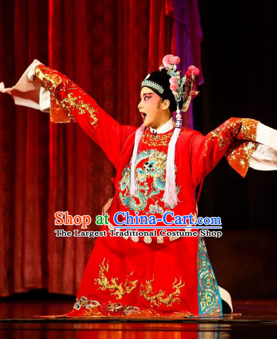 Chinese Huangmei Opera Xiaosheng Female Consort Prince Garment Costumes and Headwear An Hui Opera Scholar Li Zhaoting Apparels Young Male Clothing
