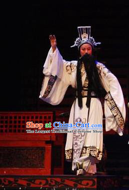 Li Li Fu Jian Chinese Huangmei Opera Minister Costumes and Headwear An Hui Opera Laosheng Apparels Official Clothing