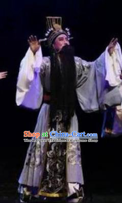 Li Li Fu Jian Chinese Huangmei Opera Laosheng Minister Costumes and Headwear An Hui Opera Apparels Official Clothing