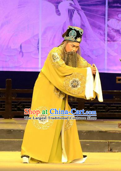 Chinese Huangmei Opera Landlord Female Consort Prince Garment Costumes and Headwear An Hui Opera Elderly Male Feng Shunqing Apparels Clothing