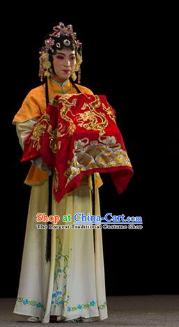 Chinese Huangmei Opera Xiaodan Garment Costumes and Headpieces Luo Pa Ji Traditional Anhui Opera Young Lady Dress Apparels
