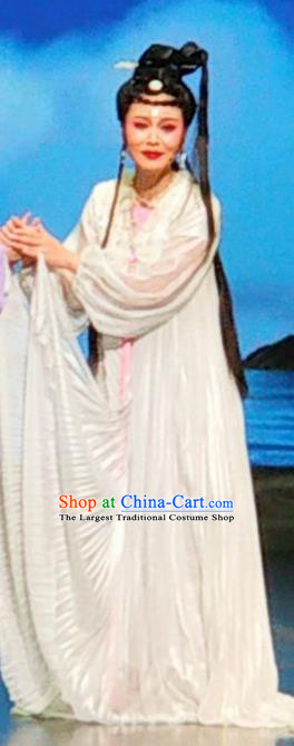 Chinese Huangmei Opera Young Female Daughter of Dragon Garment Costumes and Headpieces Traditional Anhui Opera Princess White Dress Apparels