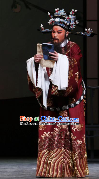 Chinese Classical Shaoxing Opera The Jade Hairpin Elderly Male Costumes Garment Yue Opera Apparels Python Embroidered Robe and Headwear