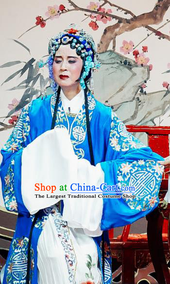 Chinese Shaoxing Opera Old Woman Dress The Jade Hairpin Yue Opera Costumes Elderly Female Apparels Garment and Headpieces