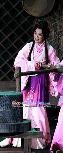 Chinese Huangmei Opera Young Female Garment Costumes and Headpieces Xiao Qiao Chu Jia Traditional Anhui Opera Hua Tan Dress Apparels