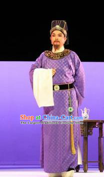Chinese Huangmei Opera Elderly Male Censor Lady Costumes and Headwear An Hui Opera Apparels Landlord Clothing