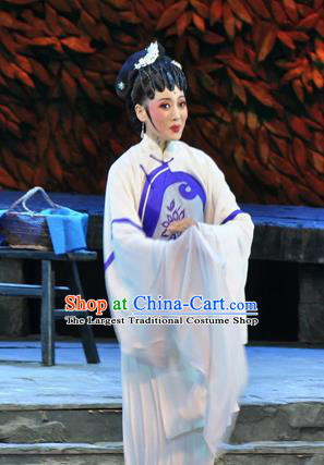 Chinese Huangmei Opera Actress Liu Mingyue Garment Costumes and Headpieces Chun Jiang Yue Traditional Anhui Opera Dress Young Female Apparels