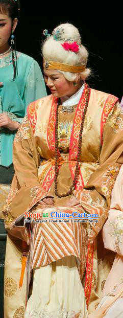 Chinese Huangmei Opera Elderly Dame Garment Costumes and Headpieces Dream of Red Mansions Traditional Anhui Opera Dowager Countess Jia Dress Apparels