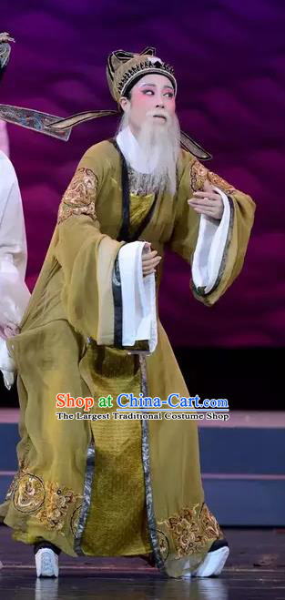 Chinese Yue Opera Elderly Male Apparels The Story of Hairpin Garment Shaoxing Opera Official Costumes and Hat