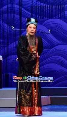 Chinese Yue Opera Prime Minister Apparels The Story of Hairpin Garment Shaoxing Opera Elderly Male Costumes and Hat Complete Set