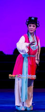Chinese Ping Opera Young Lady Apparels Costumes and Headdress The Sword of Zhong Li Traditional Pingju Opera Swordswoman Su Nv Dress Garment