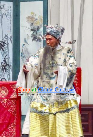 Yu He Qiao Chinese Ping Opera Old Gentleman Costumes and Headwear Pingju Opera Imperial Tutor Ke Apparels Clothing Embroidered Robe
