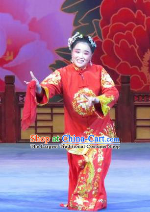 Chinese Ping Opera Elderly Female Ruan Costumes Flower a Matchmaker Apparels and Headpieces Traditional Pingju Opera Old Dame Red Dress Garment