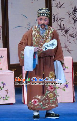 Flower a Matchmaker Chinese Ping Opera Laosheng Costumes Pingju Opera Elderly Male Li Maolin Apparels Clothing and Hat