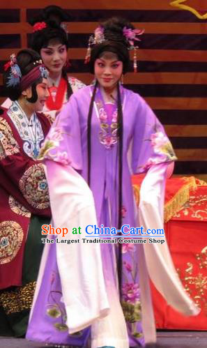 Chinese Ping Opera Hua Tan Purple Apparels Costumes and Headpieces The Five Female Worshipers Traditional Pingju Opera Diva Shuang Tao Dress Garment