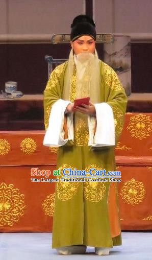 Peach Blossom Temple Chinese Ping Opera Laosheng Costumes and Headwear Pingju Opera Elderly Male Apparels Old Man Clothing
