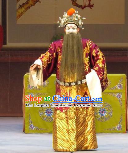 Li Xianglian Selling Paintings Chinese Ping Opera Laosheng Costumes and Headwear Pingju Opera Elderly Male Prime Minister Wen Tong Apparels Clothing