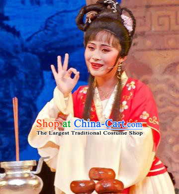 Chinese Shaoxing Opera Young Female Role Apparels Flirting Scholar Xiao Dan Costumes Yue Opera Qiu Xiang Dress Maidservant Garment and Hair Jewelry