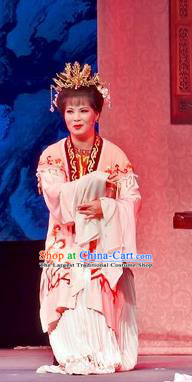 Chinese Shaoxing Opera Young Mistress Apparels Flirting Scholar Costumes Yue Opera Maidservant Dress Garment and Headpieces