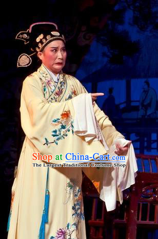 Chinese Yue Opera Calligrapher Zhu Zhishan Costumes Flirting Scholar Garment Shaoxing Opera Xiaosheng Young Male Robe Apparels and Hat