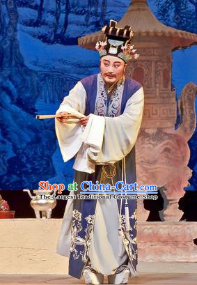 Chinese Yue Opera Old Male Costumes Flirting Scholar Garment Shaoxing Opera Man Role Imperial Tutor Hua Apparels and Headwear