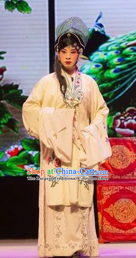 Chinese Shaoxing Opera Evil Female Apparels and Headwear Yue Opera Tell On Sargam Dress Actress Costumes Zhang Mingzhu Garment