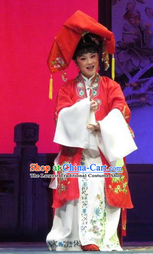 Chinese Shaoxing Opera Bride Apparels and Headdress Yue Opera Tell On Sargam Garment Costumes Young Female Red Dress