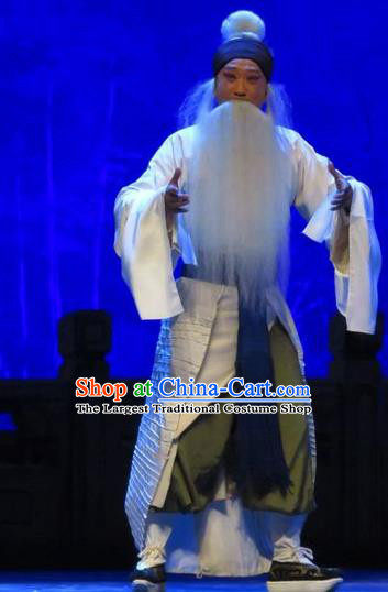 Chinese Yue Opera Old Servant Tell On Sargam Costumes and Headwear Shaoxing Opera Laosheng Garment Elderly Male Zhang Zhong Apparels Clothing