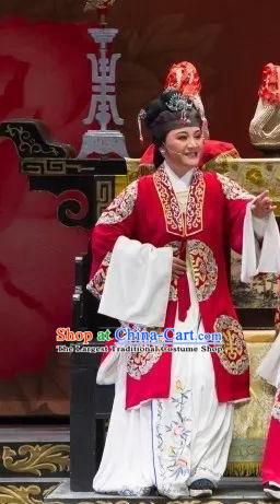 Chinese Shaoxing Opera Official Dame Dress Apparels Yue Opera Wu Nv Bai Shou Lao Dan Costumes Elderly Female Garment and Headdress
