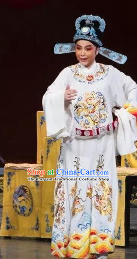 Chinese Yue Opera Niche Wu Nv Bai Shou Young Male Costumes and Hat Shaoxing Opera Apparels Zou Yinglong Embroidered Robe Vestment Garment