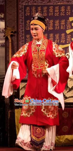 Chinese Shaoxing Opera Countess Red Dress Apparels Yue Opera Wu Nv Bai Shou Elderly Female Costumes Vieille Dame Garment and Headdress