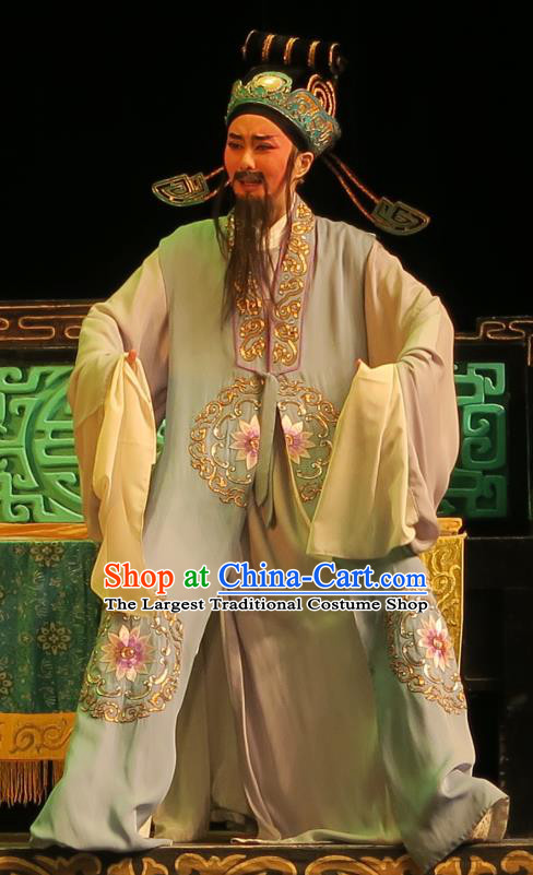 Chinese Yue Opera Old Landlord Wu Nv Bai Shou Costumes and Headwear Shaoxing Opera Laosheng Apparels Garment Official Yang Jikang Embroidered Cape