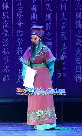 Chinese Yue Opera Elderly Male Costumes and Headwear Han Xing Wei Yang Shaoxing Opera Clothing Garment Han Dynasty Official Apparels