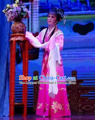 Chinese Shaoxing Opera A Bride For A Ride Wang Xiuying Apparels Costume and Headpieces Yue Opera Hua Tan Garment Rosy Dress