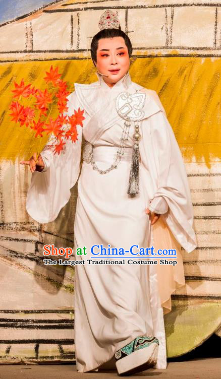Chinese Yue Opera Prince Costumes and Headwear Hu Die Meng Butterfly Dream Shaoxing Opera Scholar Young Male Xiaosheng Apparels Garment