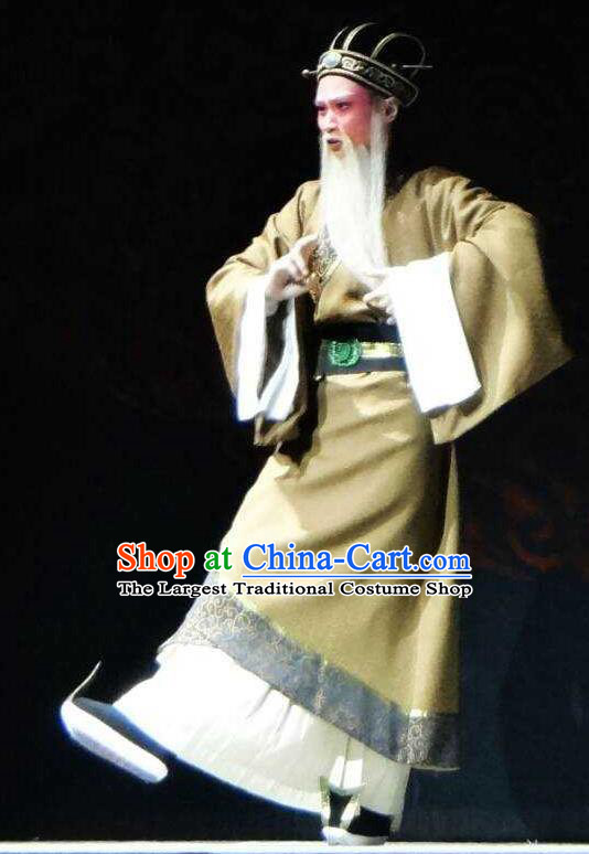 Chinese Yue Opera Elderly Male Apparels Costumes and Hat Shaoxing Opera Changle Palace Old Man Clothing Official Garment