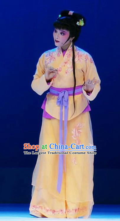 Chinese Shaoxing Opera Xiaodan Costumes and Hair Accessories Xiang Luo Ji Yue Opera Young Lady Garment Apparels