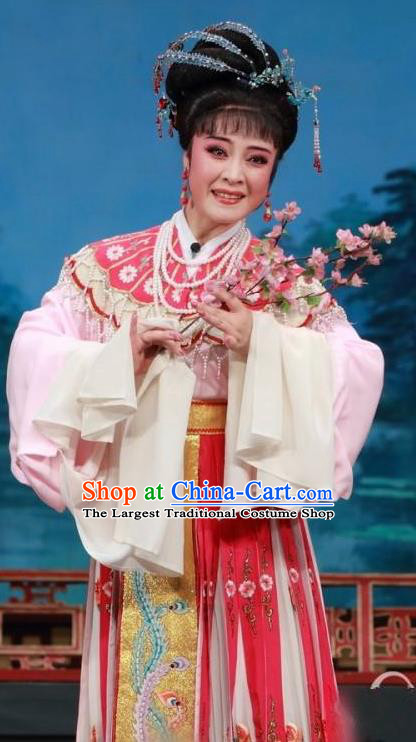 Chinese Shaoxing Opera Hua Tan Costumes and Headpieces Yue Opera San Kan Yu Mei Princess Liu Jinding Garment Apparels Clothing
