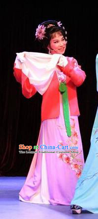 Chinese Shaoxing Opera Envious Female Costumes and Hair Accessories Lions Roar Yue Opera Dress Young Mistress Garment Apparels