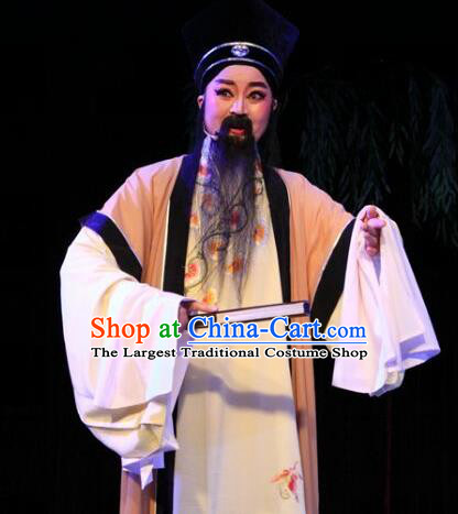 Lions Roar Chinese Yue Opera Elderly Male Costumes and Hat Shaoxing Opera Laosheng Poet Su Dongpo Garment Apparels
