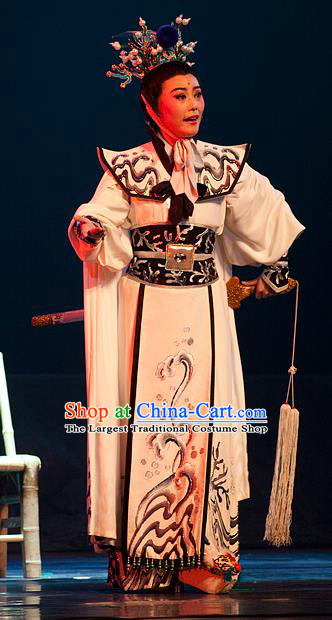 Chinese Yue Opera Princess Shanhu Costumes and Headwear Hai Ming Zhu Shaoxing Opera Young Male Apparels Niche Garment