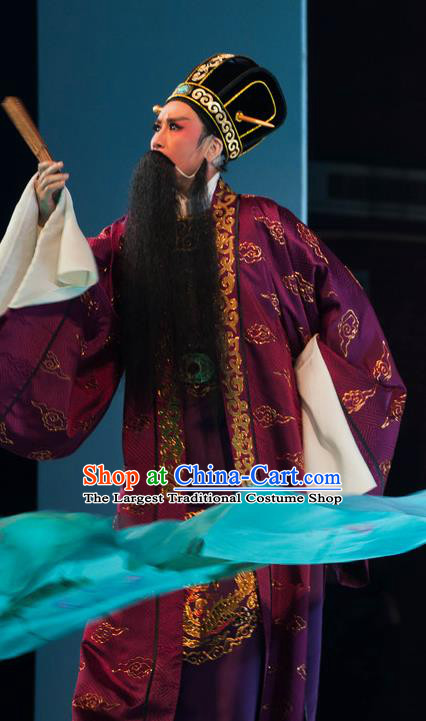Chinese Yue Opera Elderly Male Purple Garment and Headwear Shaoxing Opera Lao Sheng Costumes Apparels Official Landlord Clothing