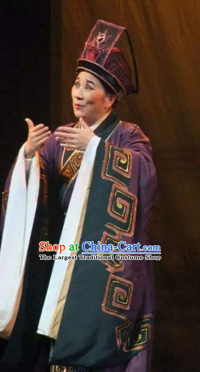 Chinese Yue Opera Han Feizi Elderly Male Costumes Apparels Clothing and Headwear Shaoxing Opera Chou Role Eunuch Zhao Gao Garment