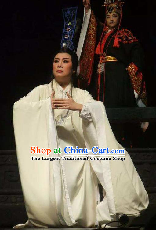 Chinese Yue Opera Official Han Feizi White Robe Young Male Costumes Clothing and Headwear Shaoxing Opera Xiaosheng Han Fei Garment Niche Apparels