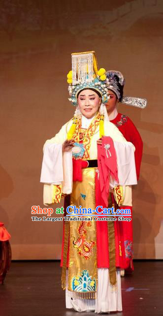 Chinese Yue Opera Emperor and the Village Girl Costumes and Headwear Shaoxing Opera Young Male Xiaosheng Garment Apparels