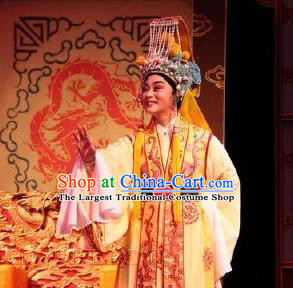 Chinese Yue Opera Young Male Embroidered Robe Emperor and the Village Girl Garment and Headwear Shaoxing Opera Xiaosheng Apparels Costumes