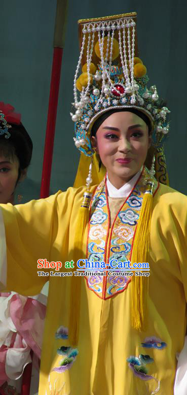 Chinese Yue Opera Niche Yellow Embroidered Robe Costumes Emperor and the Village Girl Garment and Headwear Shaoxing Opera Xiaosheng Young Male Apparels