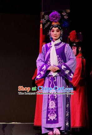 Chinese Beijing Opera Imperial Consort Apparels Costumes and Headdress Nan Hai Zi Traditional Peking Opera Qing Dynasty Purple Dress Court Maid Garment