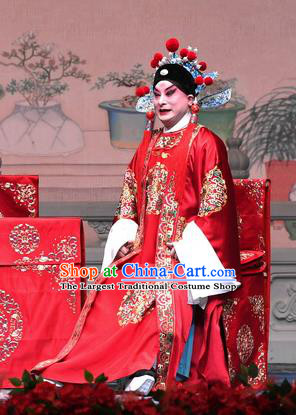 Tell On Sargam Chinese Peking Opera Young Male Garment Costumes and Headwear Beijing Opera Scholar Apparels Bridegroom Chen Guangzu Clothing