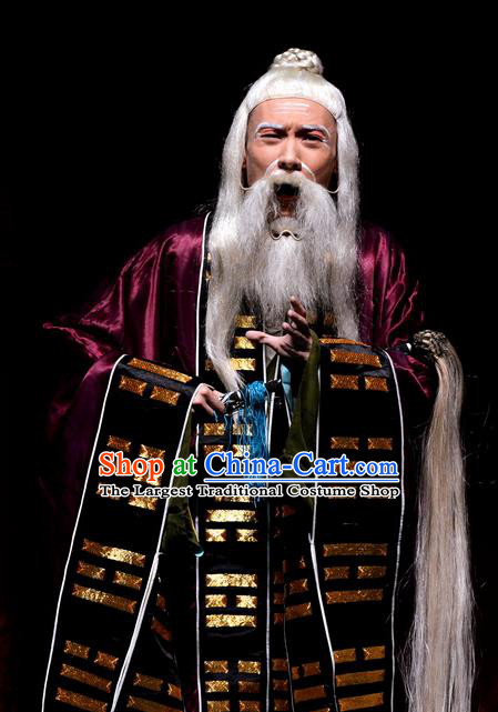 Palm Civet for Prince Chinese Ping Opera Elderly Male Costumes and Headwear Pingju Opera Taoist Priest Apparels Clothing
